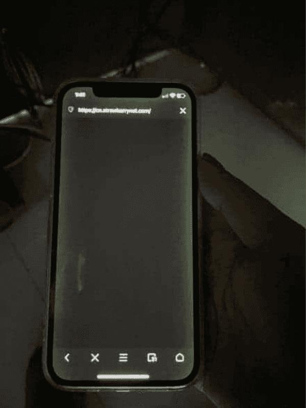 iPhone 12 screen green