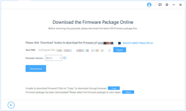 Confirm firmware package version